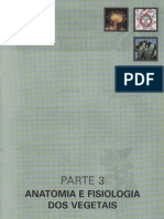 Cap.28-Morfologia Externa Das Plantas Angiospermas