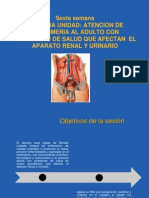 Atencion Enfermeria Problemas de Aparato Renal Urinario