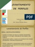 Levantamiento de perfiles.pdf