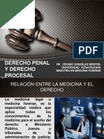 Derecho Penal Procesal