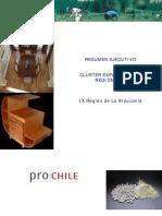 Resumen-Araucania Culster Exportadores