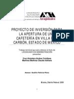 Proyecto inversión Villa del Carbón