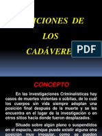POS._Y_UBI._DE_CADA