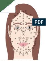 Facial Map Female