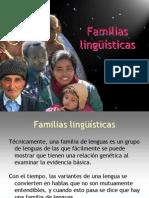 5 Familias Linguisticas