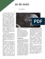 OTRO PAN DE MAÍZ.doc