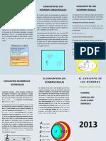 Triptico de Carolina Publicher - PDF