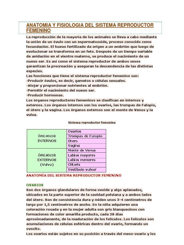 Vistoso Anatomía Y Fisiología Del Sistema Reproductivo Prueba ...