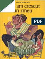 Cum am crescut un zmeu - Vasile Petre Fati