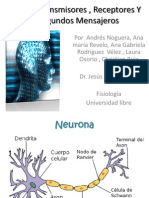 Neurotransmisores , Receptores y Segundos Mensajeros