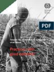 ILO--IPEC 2012 'Towards the Elimination of Hazardous Child Labour-- Practices Wth Good Potential' (U.S.dept. of Labor, NIOSH, 69 Pp.)