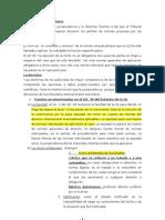 RESUMEN completo Internacional Público (1)
