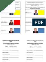 CEDULA ELECCIONES 2012CCSRS