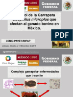 Ss-Control de La Garrapata Morelos 2010