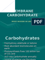 Membrane Carbohydrate a brief study
