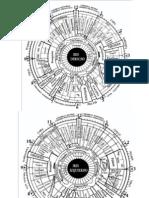 Diapositiva de Mapas de Iridologia