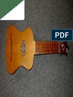 4 Course Guitar