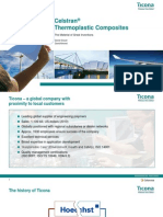 celstrancompositespresentation-110419102406-phpapp01