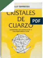 6545264 Barbosa Sally Cristales de Cuarzo Agentes de Sanacion y Trans for Mac Ion