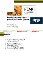 Obiee 11g - Overview of Mapping Capability