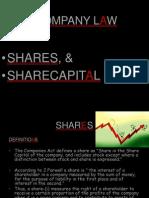 16096566-SharesShareCapital