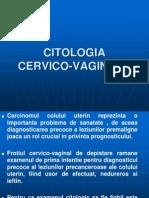 CITO 2012