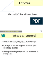 Enzymes Structure and Purpose