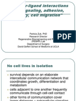 (1)Cell Signaling