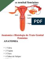 1ª AULA - Anatomia e Histologia