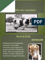 Trab de Mastitis en Vacunos