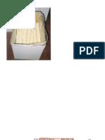 PAN PRECOCIDO.doc