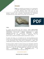 Geología de Carbonatos