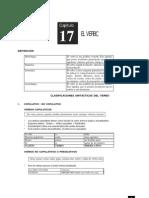 17a - Verbo.pdf