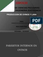 Parasitos internos ovinos