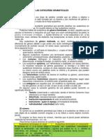 LAS+CATEGORÍAS+GRAMATICALES_0