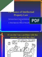 Basics of Intellectual Property Law