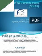 Colección Nacional de Peces (CENAR)