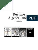 Resume_AL