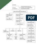 Patofisiologi Lower Urinary Tract Infection