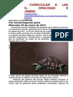 Reforma Curricular a Las Normales, Opacidad e Incertidumbre 2