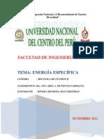 RENeRGIA ESPEcífica.docx