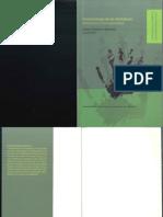 151983817 Epistemologia de Las Identidades PDF