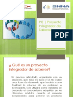 PIS ( Proyecto Integrador de Saberes)