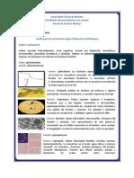 Clasificacion de Las Bacterias Segun El Manual de Bergey