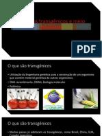 transgênicos (1)