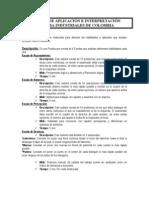 Manual de Aplicacion de Pruebas Seleccion de Personal