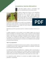 Cultivos organopónicos en Venezuela