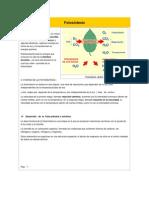 Fotosíntesis(1).docx