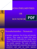 The+Nemathelminthes