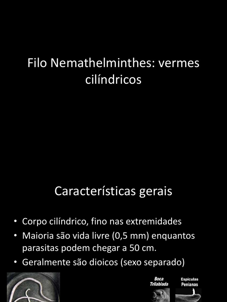 Filo nemathelminthes caracteristicas, NEMATODA E ROTIFERA (E-Aula USP) oulage les paraziták
